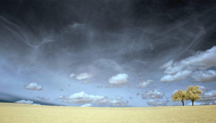 Utilité réchauffement climatique, Photo par Norbert Fulep