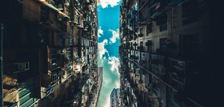 Singularité écologique, Photo par Rikki Chan