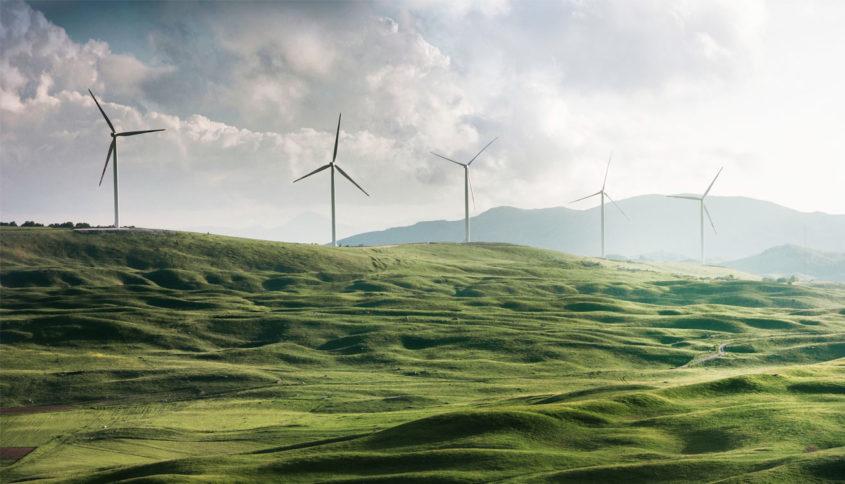 Renforcement synergique des énergies, Photo par Appolinary Kalashnikova