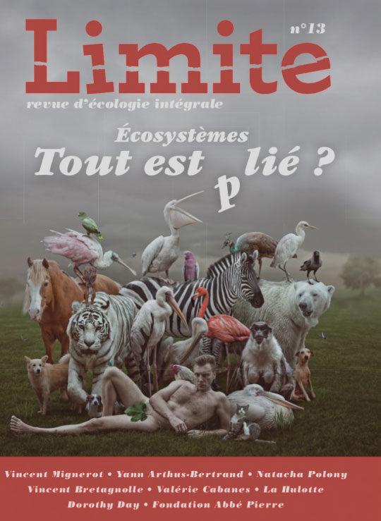 Revue Limite